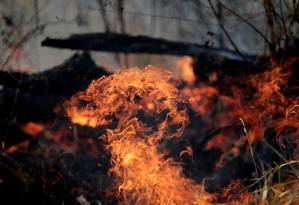 Queimada nos arredores de Porto Velho. Rondônia é um dos estados mais atingidos pelo fogo, sendo o ponto de partida dos aviões da Força Aérea Brasileira na operação para apagar os incêndios Foto: UESLEI MARCELINO / REUTERS