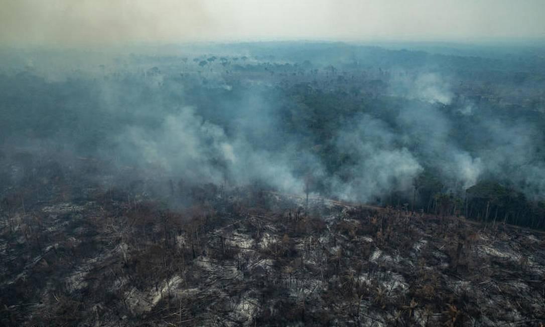 Vista aérea da Reserva Biológica de Serra do Cachimbo, em Altamira: indígenas relatam que Polícia Federal não atende suas denúncias Foto: Victor Moriyama / Greenpeace