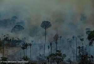 Vista aérea da APA do Jamanxim, em Novo Progresso, no Sul do Pará: fogo atingiu unidades de conservação Foto: Victor Moriyama / Greenpeace