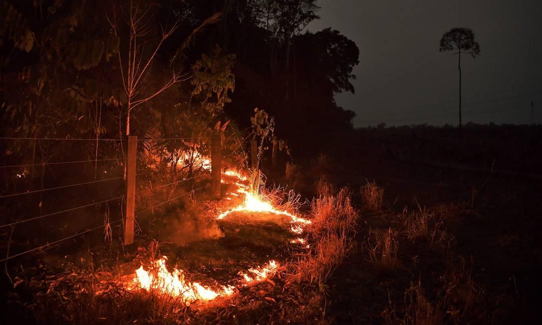 Incêndio consome floresta perto de Abuna em Rondônia 24/08/2019 Foto: CARL DE SOUZA / AFP