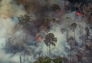 Foto aérea divulgada pelo Greenpeace mostrando fumaça na floresta em Candeias do Jamari, perto de Porto Velho (RO) Foto: VICTOR MORIYAMA / AFP / 24-08-2019