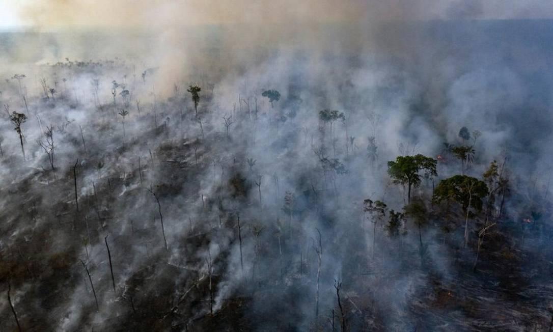 Foto aérea da Amazônia tirada com um drone no estado do Mato Grosso Foto: HANDOUT / MARIZILDA CRUPPE/AMNESTY INTERN.