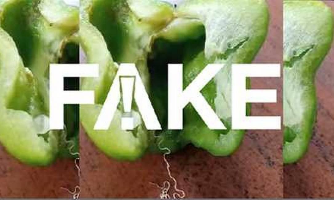 É #FAKE que pimentões estejam contaminados com verme Simla Mirch Foto: Reprodução