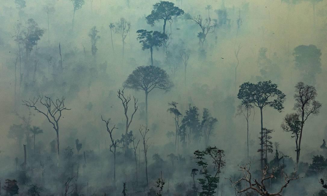 Fogo na Floresta Amazônica no município de Altamira, no Pará; governo brasileiro decidiu recusar dinheiro oferecido pelo G7 para combate de incêndios Foto: VICTOR MORIYAMA / AFP/Greenpeace