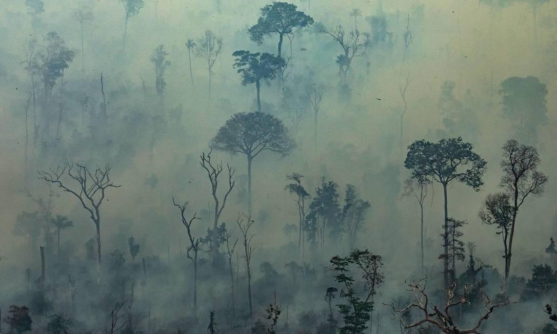 Fogo na Floresta Amazônica no município de Altamira, no Pará; governo brasileiro decidiu recusar dinheiro oferecido pelo G7 para combate de incêndios Foto: VICTOR MORIYAMA / AFP / Greenpeace