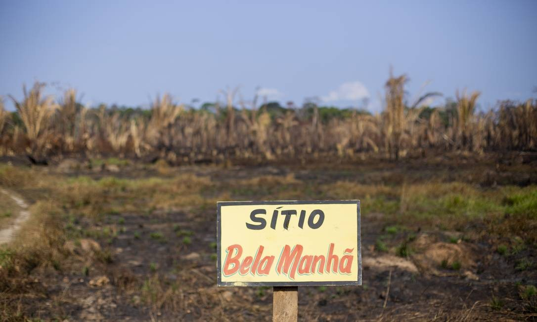 Trecho de queimada perto da divisa entre os estados de Rondônia e Amazonas. É comum o desmatamento e as queimadas na floresta ao longo da Rodovia Manaus -Porto Velho Foto: Gabriel Monteiro / Agência O Globo