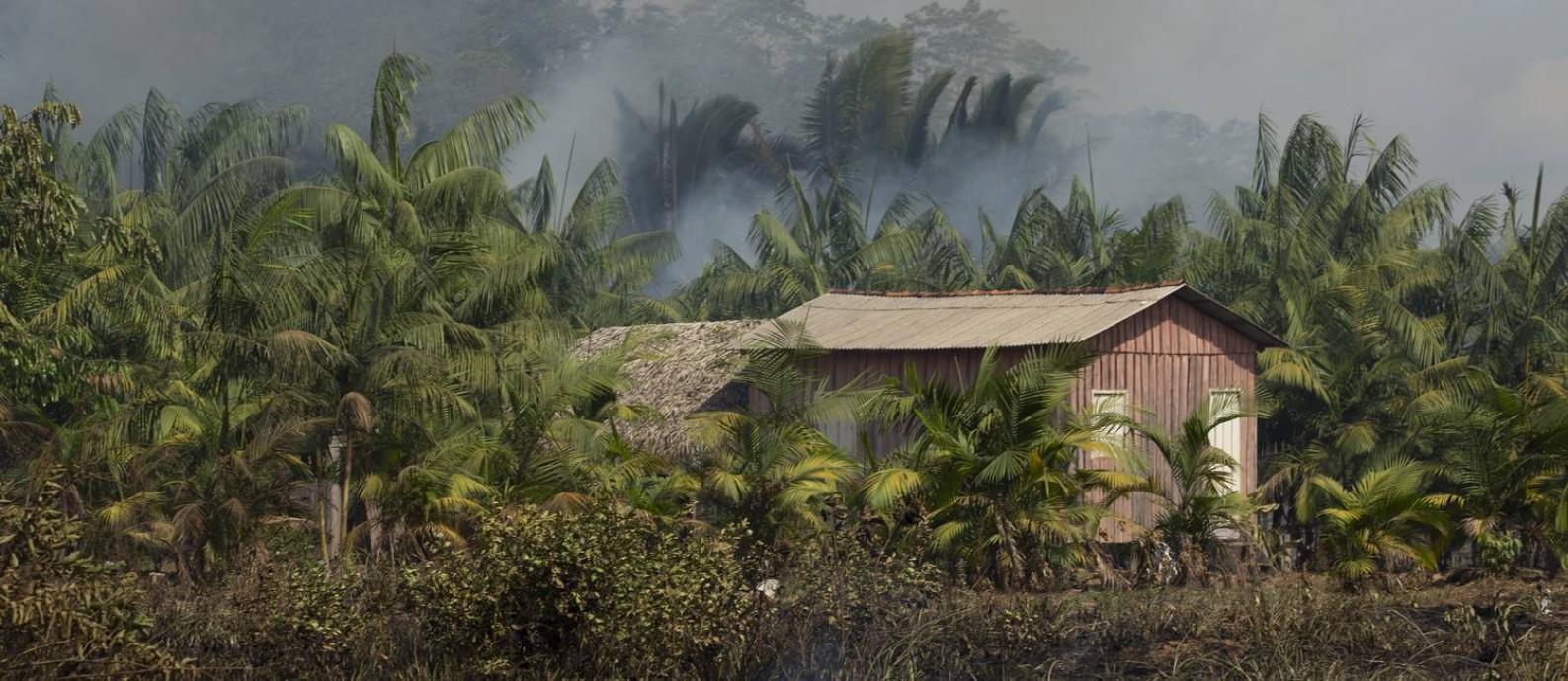 Queimadas na margem da BR -319, no estado do Amazonas. Foto: Gabriel Montero / Agência O Globo