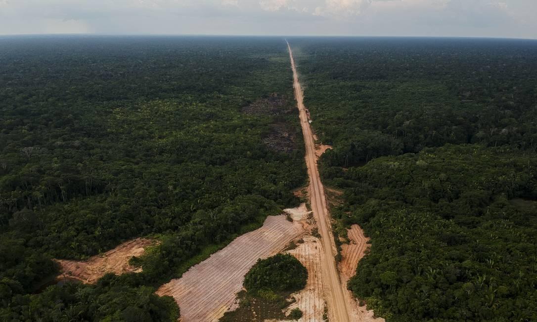 De acordo com informações do INPA, estudos realizados na região apontam a construção de estradas como a principal causa do desmatamento Foto: Gabriel Monteiro / Agência O Globo