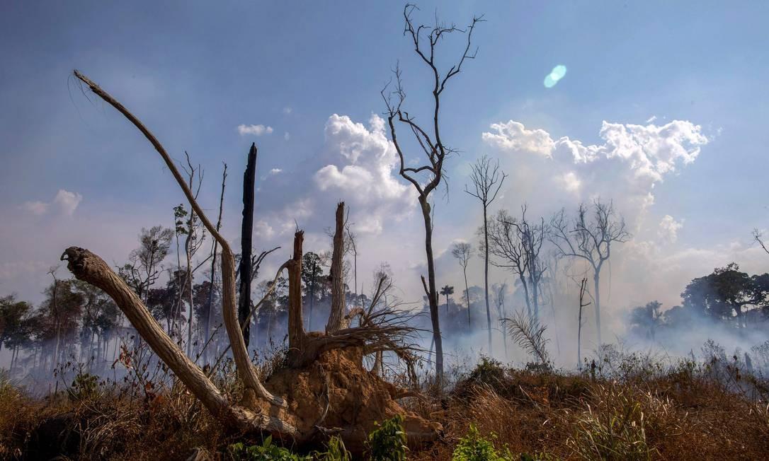 Área queimada após um incêndio na floresta amazônica perto de Novo Progresso, no Pará. O Brasil implantou no domingo duas aeronaves para apagar incêndios que devoram partes da floresta Foto: JOAO LAET / AFP / 25/08/2019