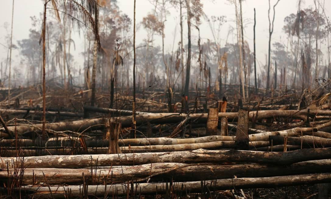 Cenário de destruição em uma área da floresta amazônica após um incêndio em Boca do Acre, estado do Amazonas Foto: BRUNO KELLY / REUTERS / 24/08/2019