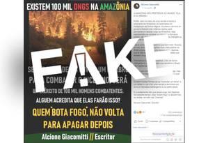 É #FAKE que haja 100 mil ONGs na Amazônia e nenhuma no Nordeste Foto: Reprodução