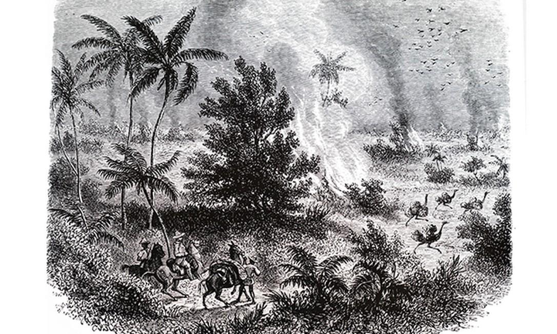 Gravura mostra fogo no Brasil do século XIX Foto: Universal History Archive / Getty