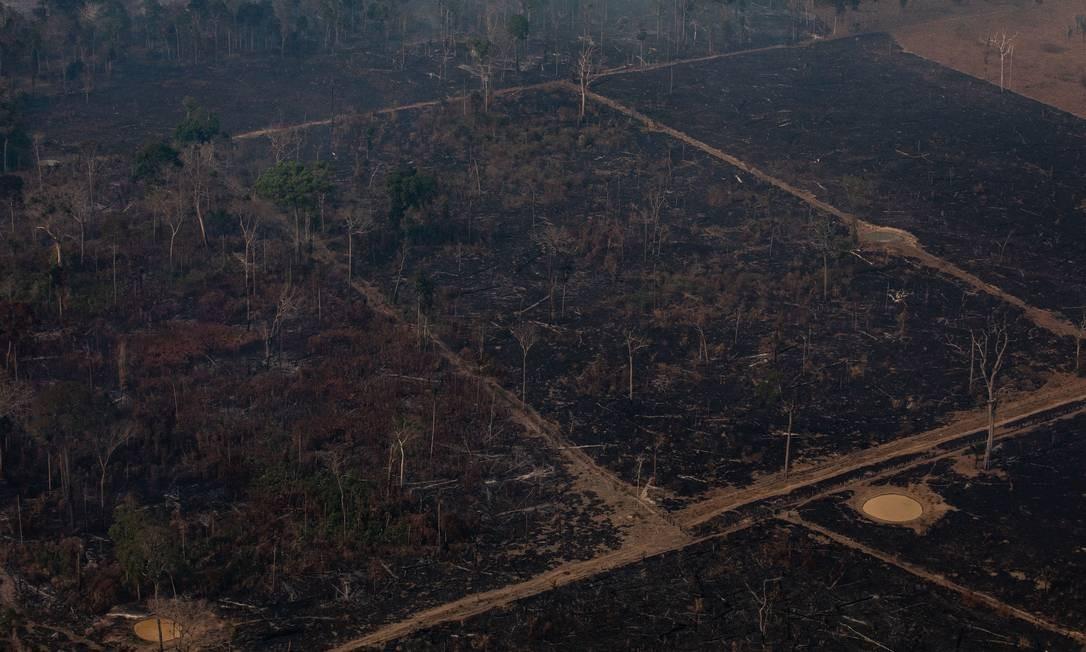 Área da Floresta Amazônica, em Porto Velho, dizimada por queimadas Foto: Victor Moriyama / Getty Images