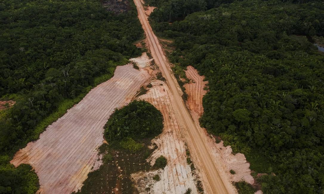 Desmatamento à beira da BR-319, que liga Porto Velho a Manaus Foto: Gabriel Monteiro / Agência O Globo