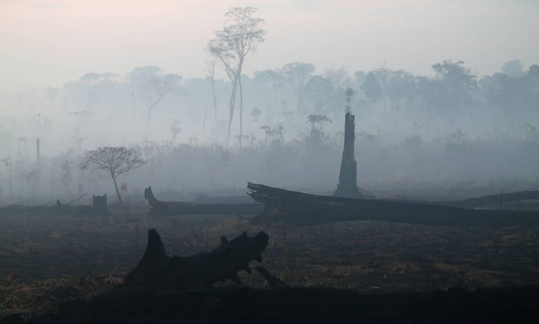 Área queimada na região amazôniza próxima a Porto Velho Foto: RICARDO MORAES / REUTERS