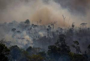 Incêndios em Altamira, no Pará. Foto: JOAO LAET / AFP