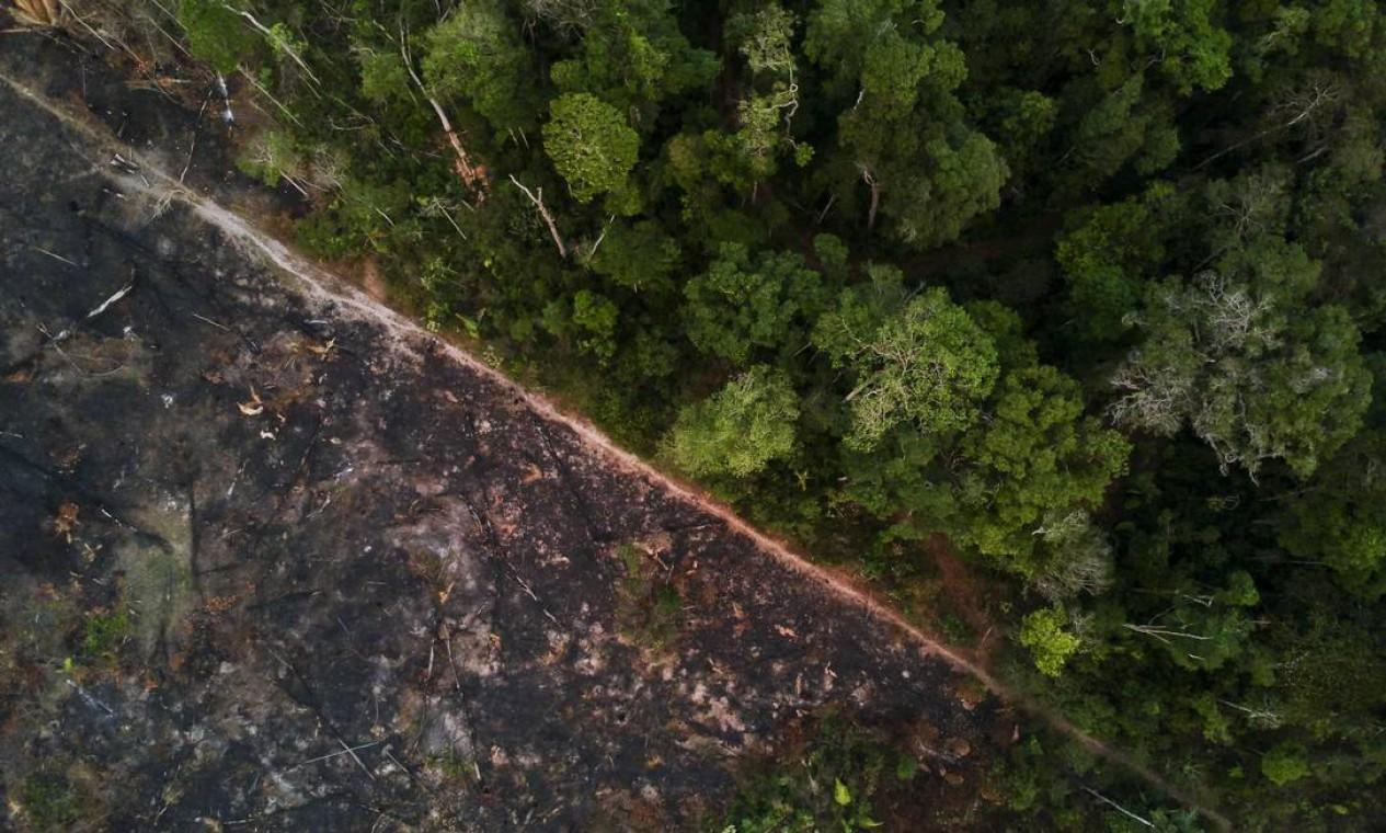 A floresta ao lado da terra desmatada e queimada perto da Reserva Uru-Eu-Wau-Wau - 29/08/2019 Foto: Gabriel Monteiro / Agência O Globo