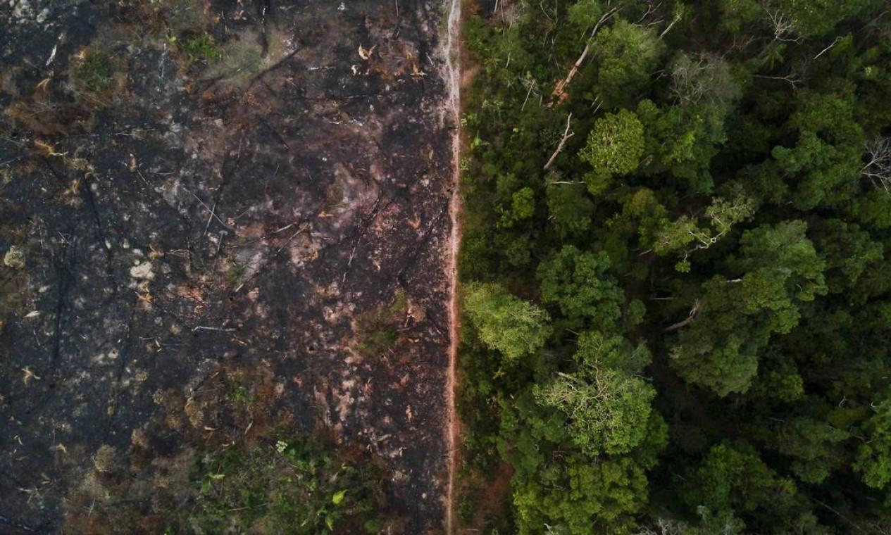 Na Amazônia a floresta é desmatada e depois incendiada - 29/08/2019 Foto: Gabriel Monteiro / Agência O Globo