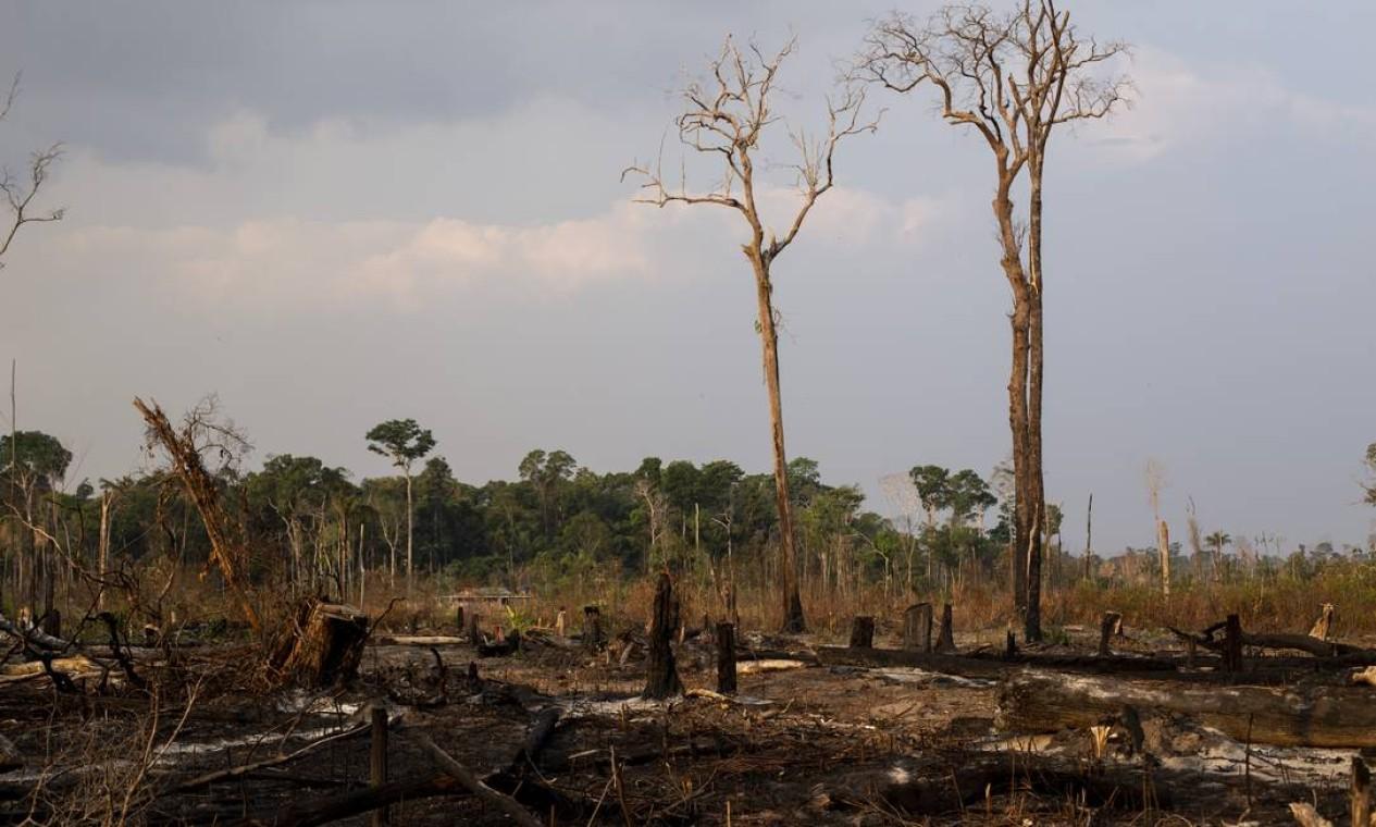 De acordo com dados do Corpo de Bombeiros do estado, Rondônia teve um aumento de 370% de focos de calor neste mês de agosto, se comparado ao mesmo mês em 2018 - 29/08/2019 Foto: Gabriel Monteiro / Agência O Globo