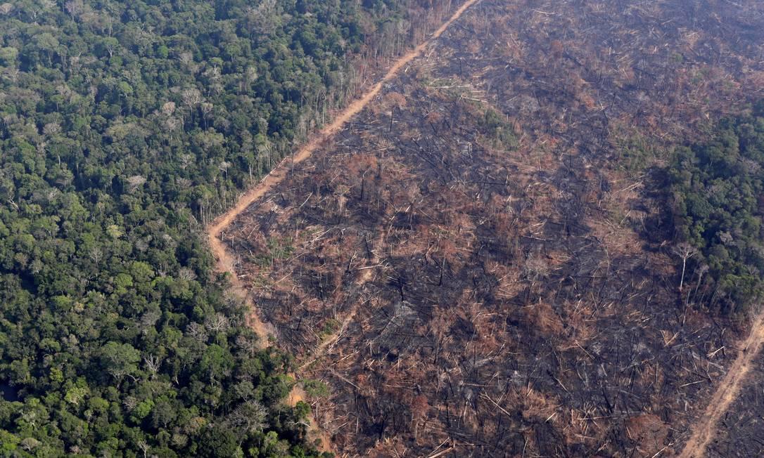 Vista aérea de queimada na Amazônia, no estado de Rondônia 29/08/2019 Foto: RICARDO MORAES / REUTERS