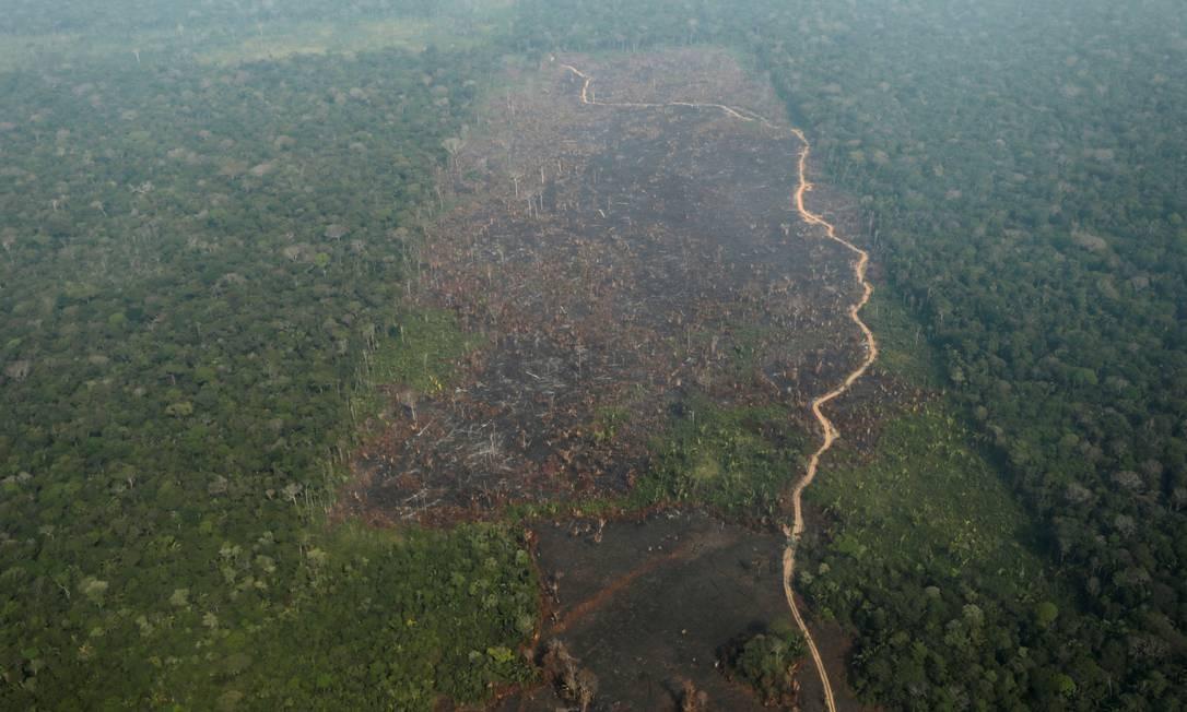 Visão aérea de uma parte desmatada da Amazônia, numa região próxima ao município de Humaitá, no Amazônas. Foto tirada em 22 de agosto. Foto: UESLEI MARCELINO / Reuters