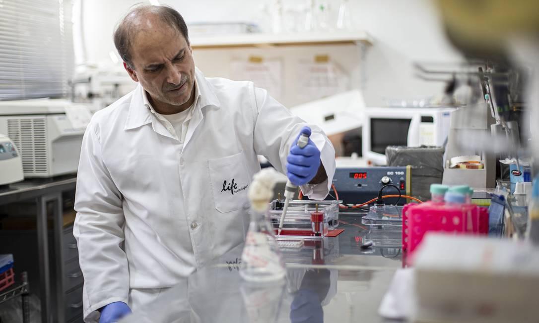 O professor Rodrigo Brindeiro teme pelo futuro das pesquisas sobre mayaro e chicungunha, no laboratório da UFRJ. Foto: Hermes de Paula / Agência O Globo