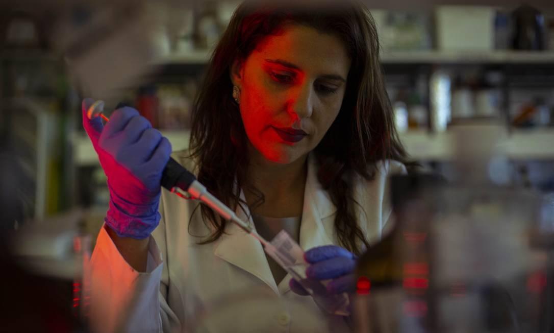Professora e pesquisadora da UnB, Marcella Lemos Brettas Carneiro é uma das coordenadoas do estudo para tratar úlceras em pé de diabéticos Foto: Daniel Marenco / Agência O Globo