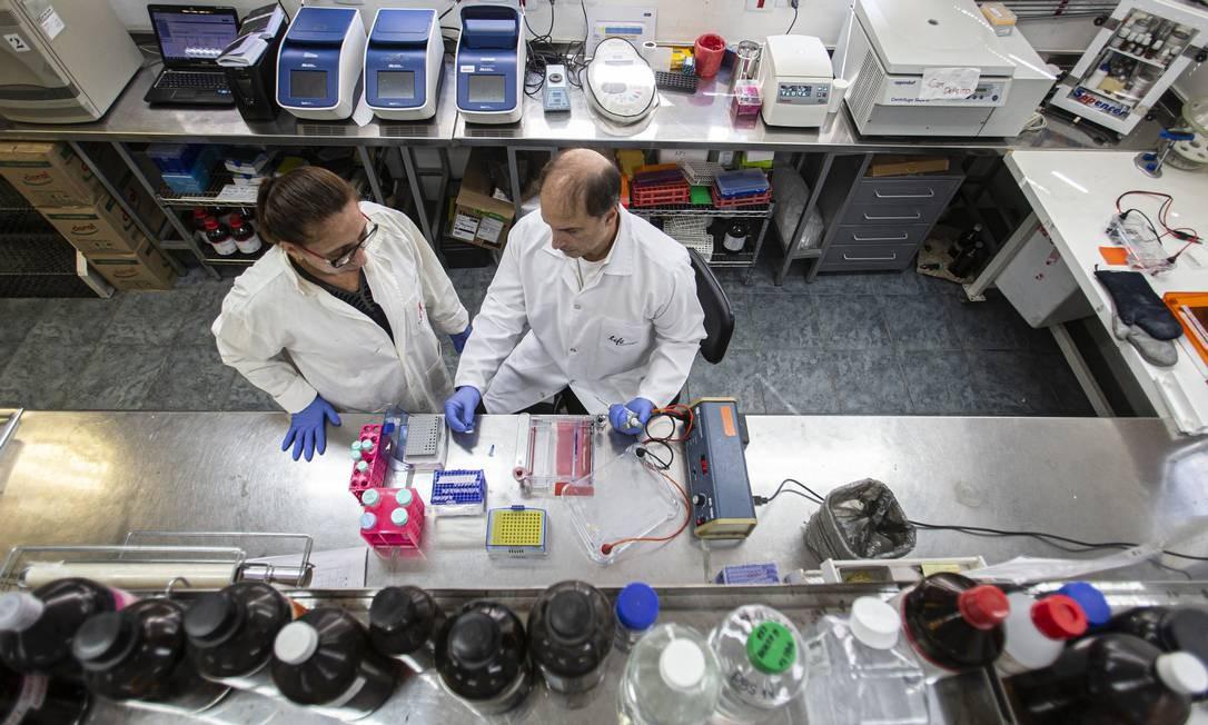 Dos 22 pesquisadores do Laboratório de Virologia Molecular da UFRJ, dez são apoiados pela agência Foto: Hermes de Paula / Agência O Globo