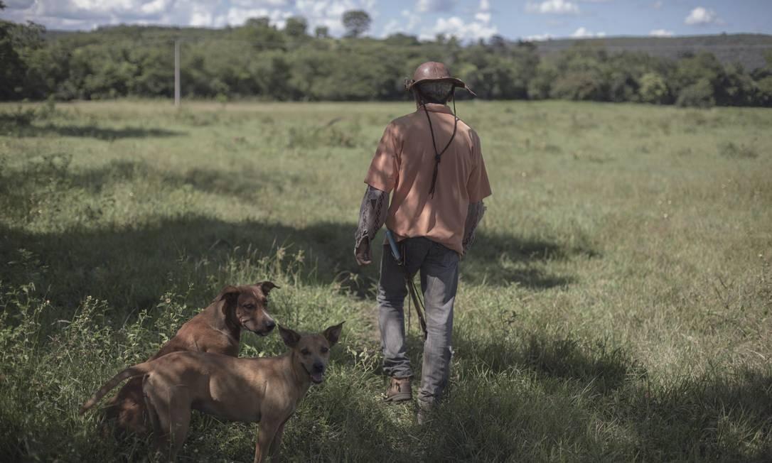 Pequena propriedade rural na Bahia: Câmara dos Deputados aprova PL que remunera agricultor que preserva mata. Foto: Daniel Marenco / Agência O Globo