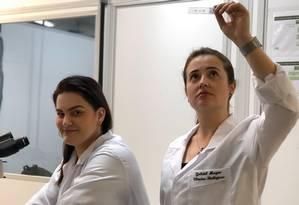 A neurocientista Cláudia Figueiredo e a pesquisadora Fernanda Barros, da Universidade Federal do Rio de Janeiro (UFRJ) que descobriram os alvos do vírus zika no cérebro de adultos Foto: Divulgação