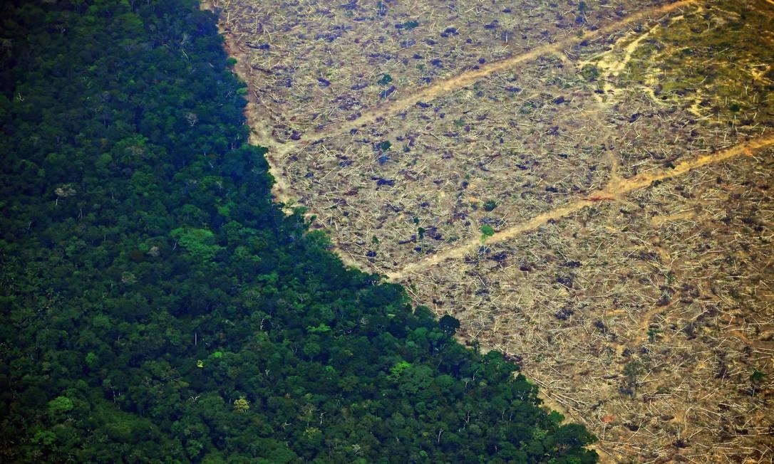 Área desmatada da Amazônia em Rondônia Foto: CARL DE SOUZA / AFP
