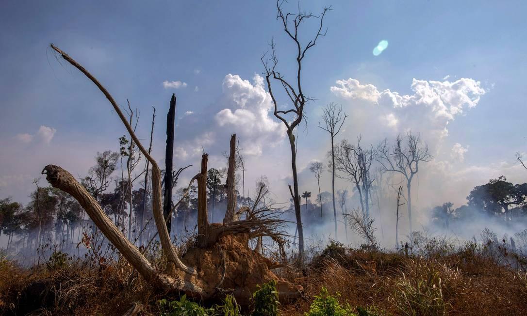 """Área queimada próximo a Novo Progresso, no Pará, onde é investigado o """"Dia do Fogo"""" Foto: JOAO LAET / AFP"""
