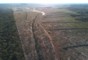 Especulação fundiária é uma das hipóteses para os desmatamentos que são substituídos por nada Foto: Lapig/UFG