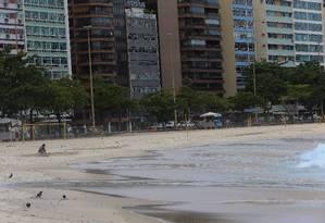 Prédios ao fundo da praia de Icaraí: bairro tem um dos IPTUs mais caros da cidade Foto: Roberto Moreyra / Agência O Globo