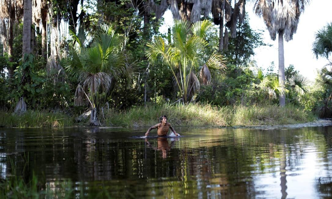 """Um """"guardião da floresta"""" toma banho Foto: UESLEI MARCELINO / REUTERS"""