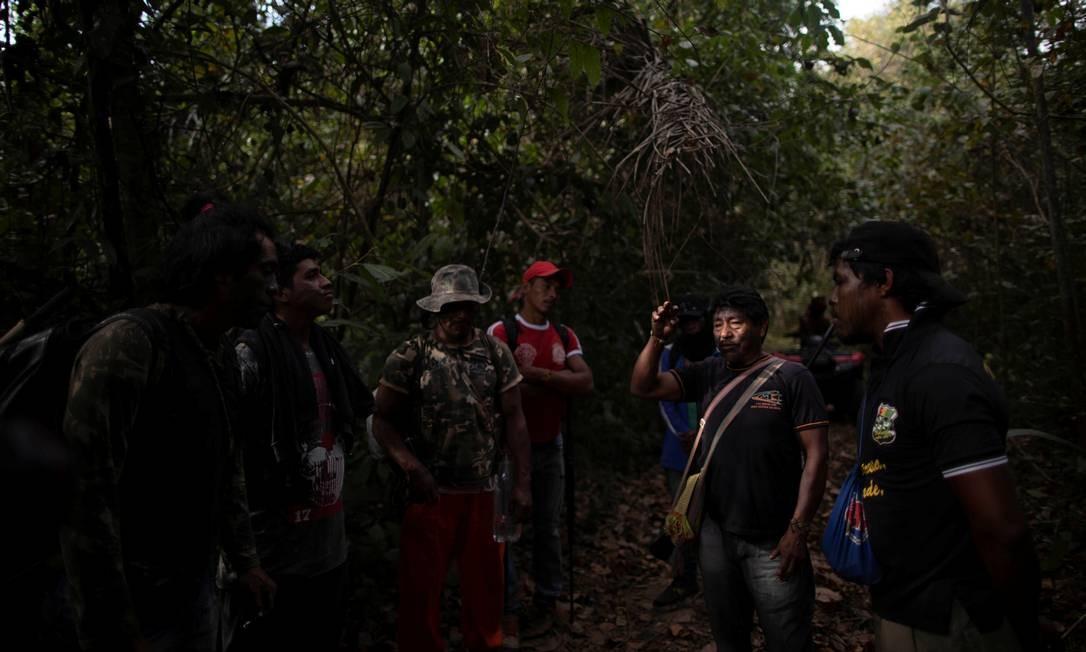 O grupo percorre a floresta em busca de acampamentos clandestinos de madeireiros na terra indígena de Arariboia, perto da cidade de Amarante, no Maranhão Foto: UESLEI MARCELINO / REUTERS