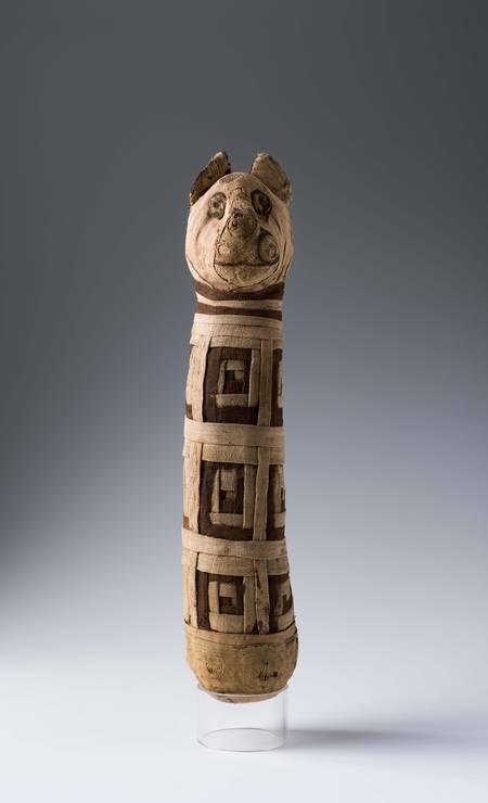 Múmia de gato, procedência desconhecida, século III a.C. – século III d.C. Feita em material orgânico, gaze de linho Foto: Divulgação/Museo Egizio