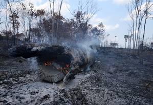 Tronco queima em área desmatada na Floresta Nacional do Jamanxim, na Amazônia, próximo ao município de Novo Progresso, no estado do Pará. Foto: Amanda Perobelli / Reuters