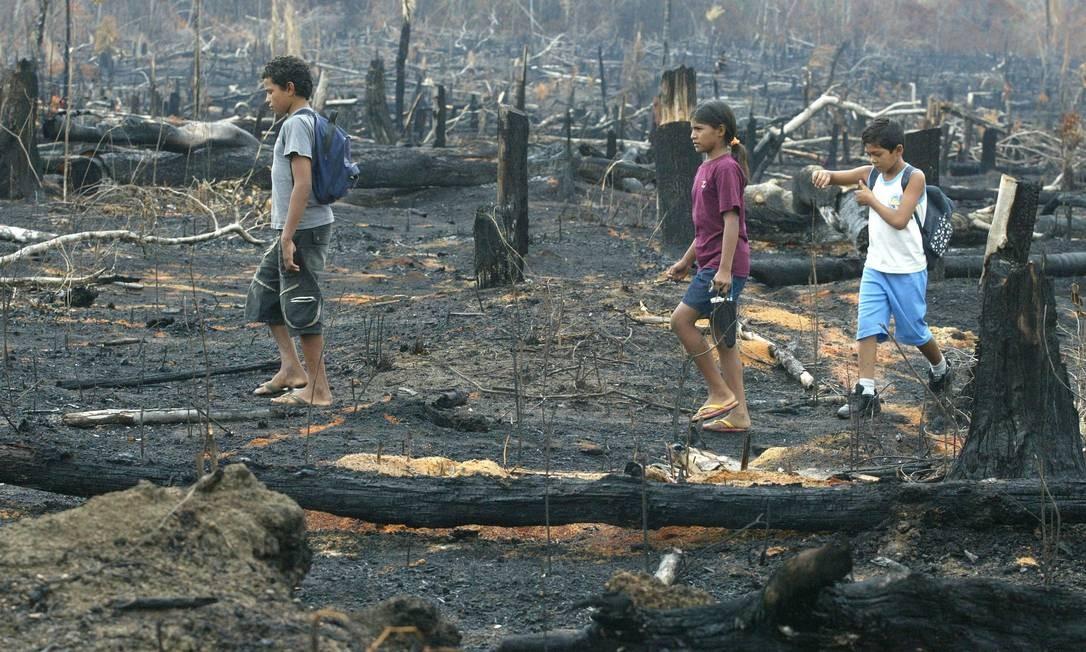 Crianças caminham entre troncos queimados da Floresta Amazônica, em Rondônia, em 2009 Foto: Custódio Coimbra / Agência O Globo