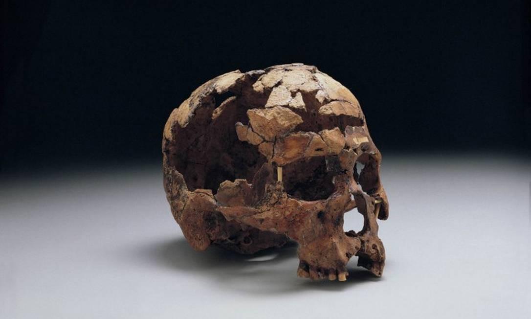 'Antes - Histórias da Pré-História', no Centro Cultural Banco do Brasil - Crânio humano de 11.060 anos, encontrado na Toca dos Coqueiros, no Parque Nacional Serra da Capivara, no Piauí Foto: Divulgação