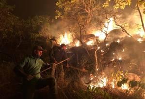 Brigadistas combatem incêndio no Parque Estadual do Monte Alegre, no Pará Foto: Divulgação