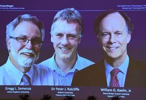 Os vencedores do Nobel de Medicina de 2019, Gregg Semenza, Peter Ratcliffe e William Kaelin Jr, da esquerda para a direita Foto: JONATHAN NACKSTRAND / AFP