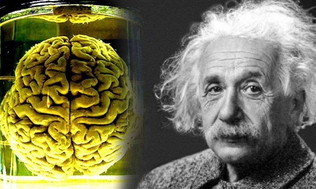Muitos estudos têm sido realizados no cérebro de Albert Einstein, removido após sua morte, na tentativa de revelar algo especial que explique a sua criatividade e inteligência. Foto: Reprodução