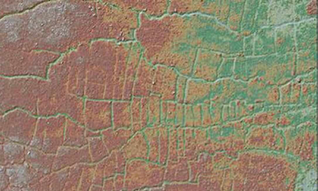 Mapa de parte do Vale dos Pássaros do Paraíso utilizando tecnologia lídar Foto: PNAS