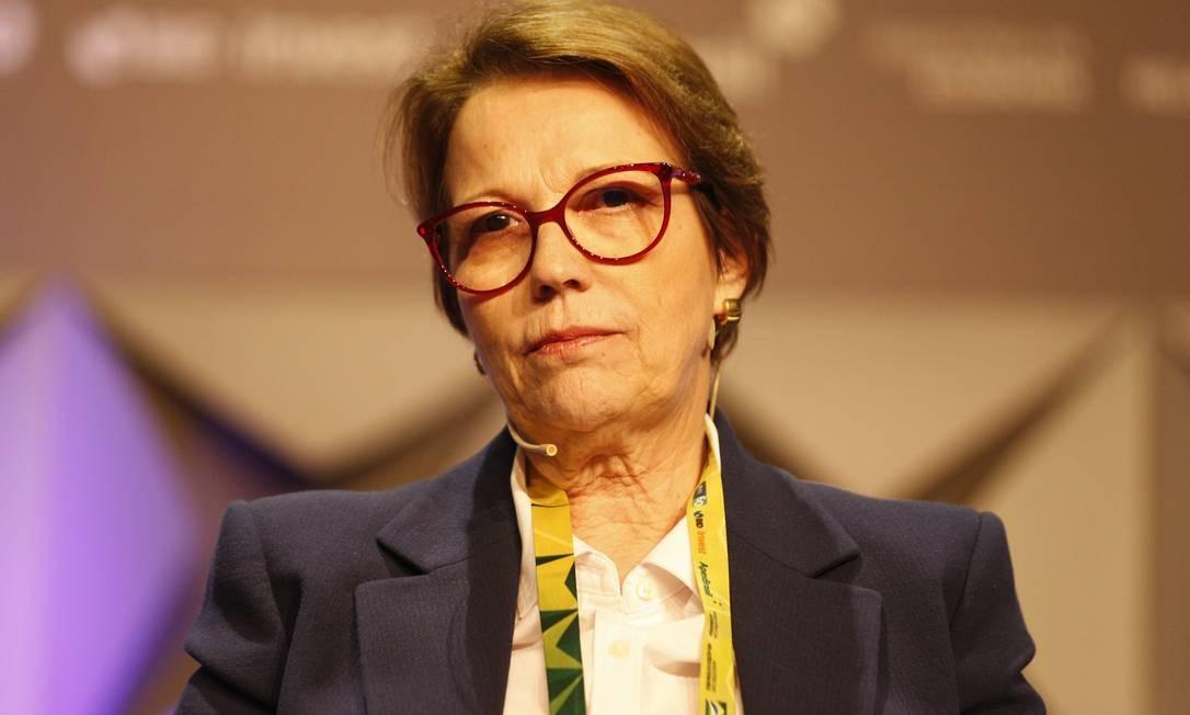 A ministra Tereza Cristina (Agricultura) no Fórum de Investimentos Brasil 2019, em São Paulo. Foto: Guilherme Martimon/MAPA