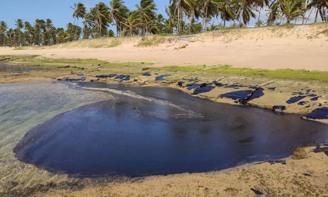 Blocos de óleo cru tomaram conta de parte da Praia do Forte na manhã desta sexta-feira (11) Foto: Carlos Valério Mendonça / Oceanauta