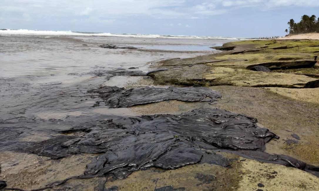 Óleo vazado contamina a Praia do Forte, local turístico na Bahia Foto: Carlos Valério Mendonça / Oceanauta