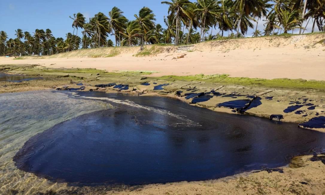 Óleo encontrado na Praia do Forte, na Bahia. Foto: Carlos Valério Mendonça / Oceanauta