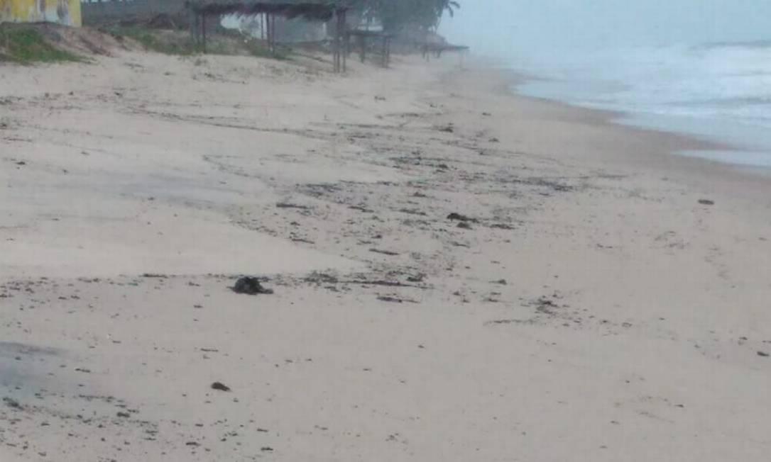 Óleo mancha a areia da Praia de Poças, no litoral da Bahia Foto: Divulgação