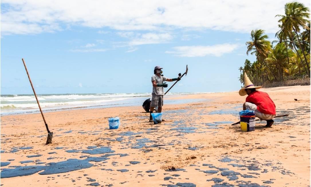 Voluntários do grupo Guardiões do Litoral atuam na Praia do Jauá, em Camaçari (BA), na quinta-feira (16) Foto: Mateus Morbeck / Guardiões do Litoral